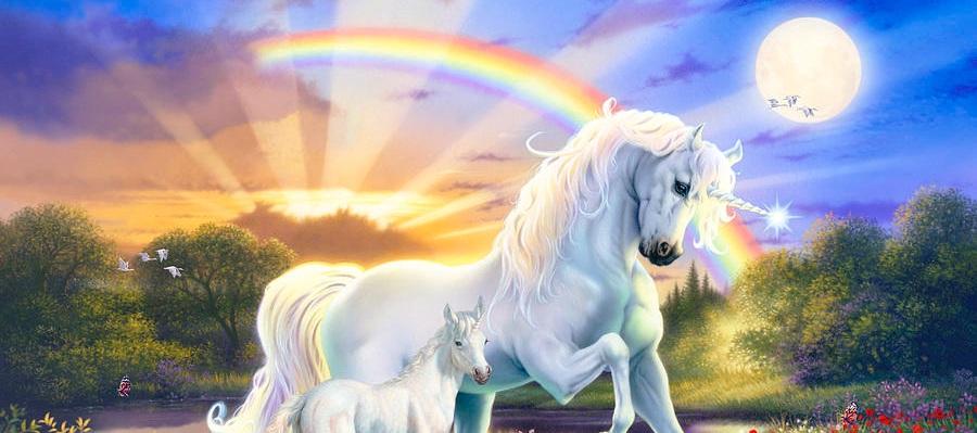 the-rainbow-unicorn-steve-read.jpg