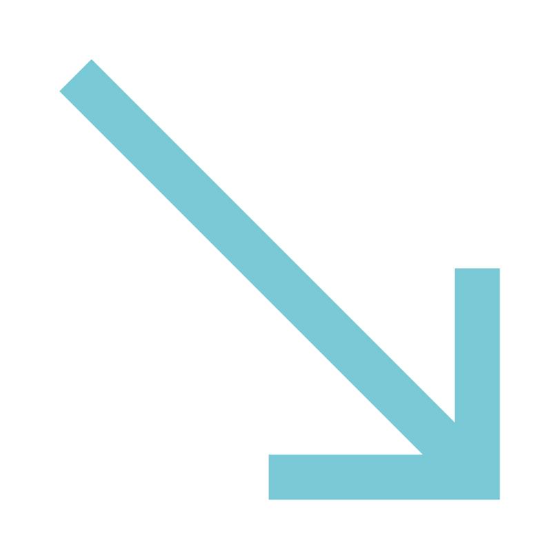 behaviourstudio_services_prevent.jpg