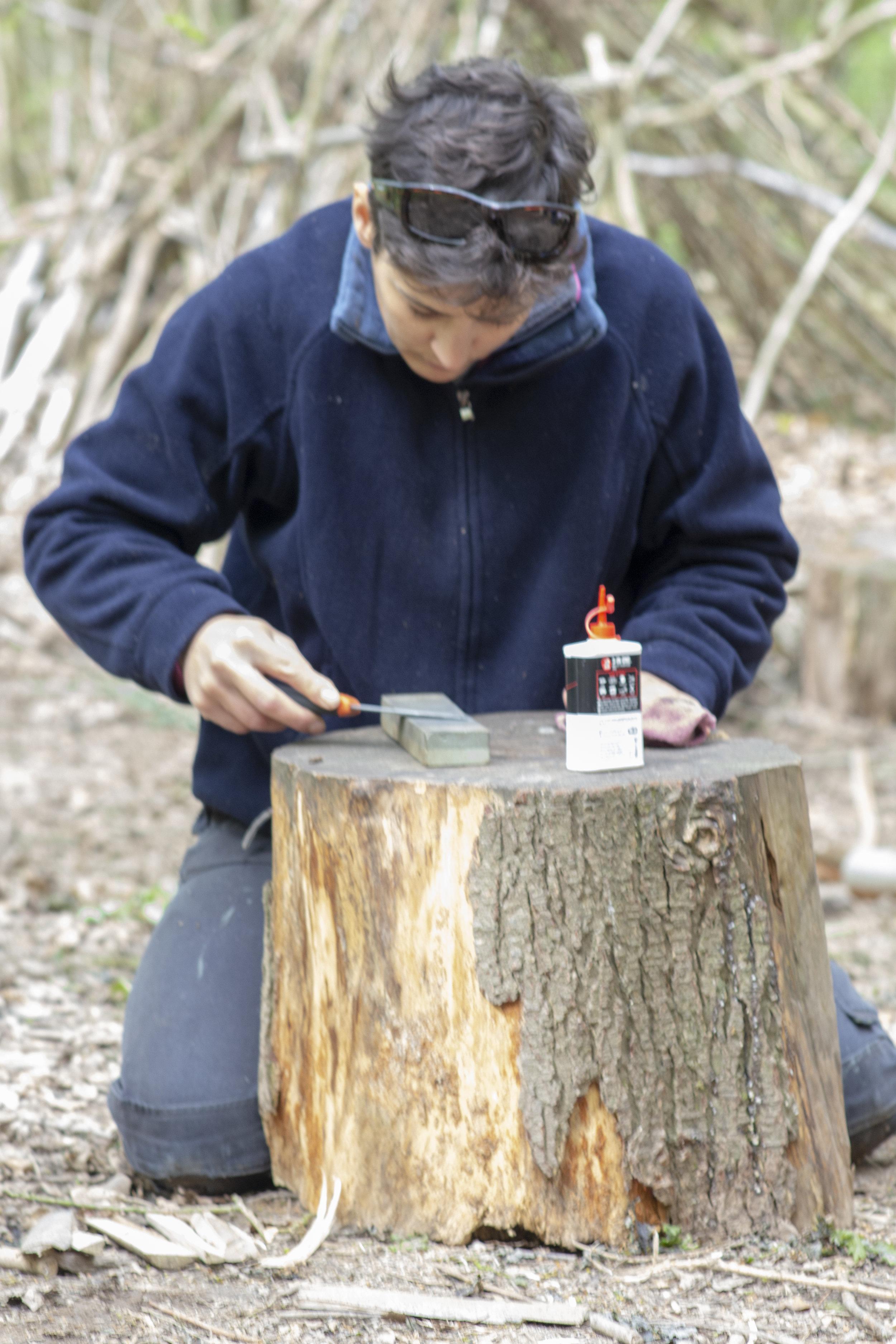 Cambium Forest School Training
