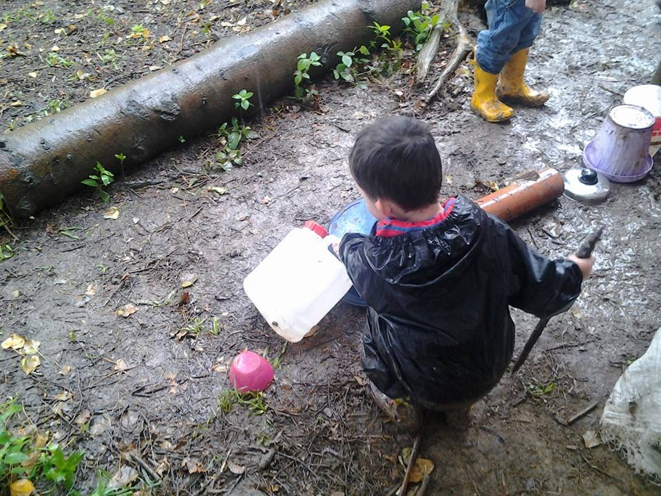 Forest school publications