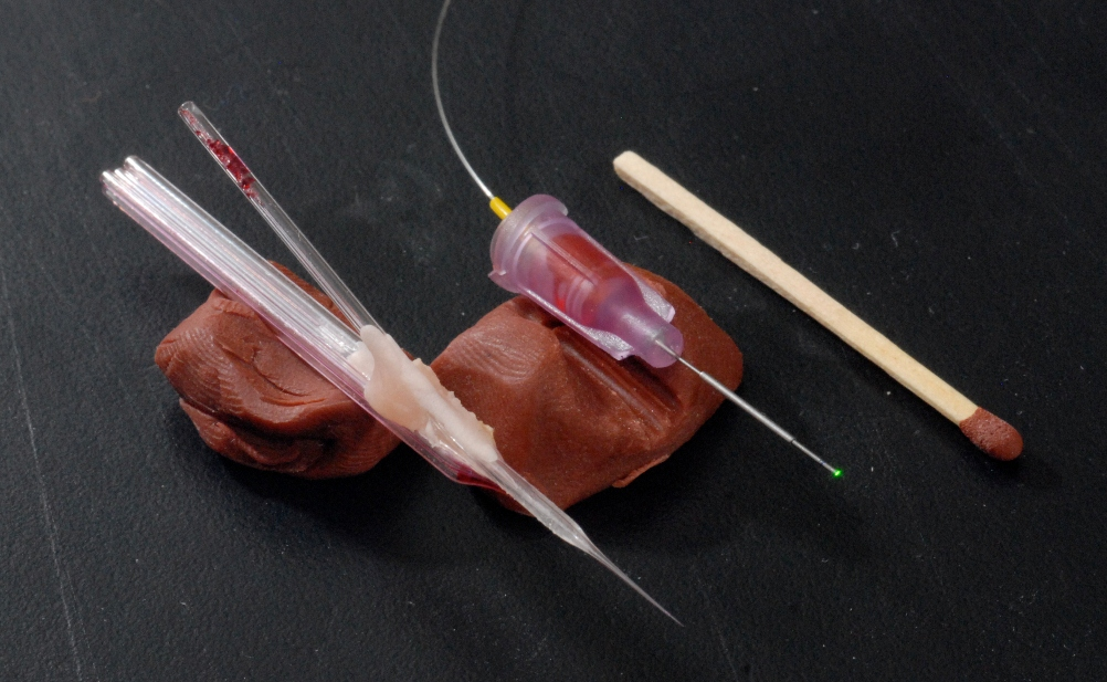 Image 2    Image of a multibarrel electrode (left) and a glass fiber implant (right). A match is also shown on the image for size comparison. The multi barrel electrode consists of s single barrel recording electrode that can be used to record electrical activity from single neurons in-vivo. The attached multibarrel (in this case a 5 barrel unit) can be filled with various pharmacological agents (in most cases agonists and antagonists of excitatory or inhibitory receptors). The drugs can be iontophoresed on demand into the immediate vicinity of the neuron, thus activating or deactivating certain inputs that the neuron is receiving. The glass fiber tip can be implanted into the brain nucleus of interest and used to deliver light to this nucleus, also to manipulate the neural circuitry under investigation.