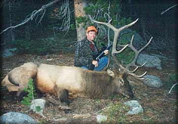 Elk_Wayne.jpg