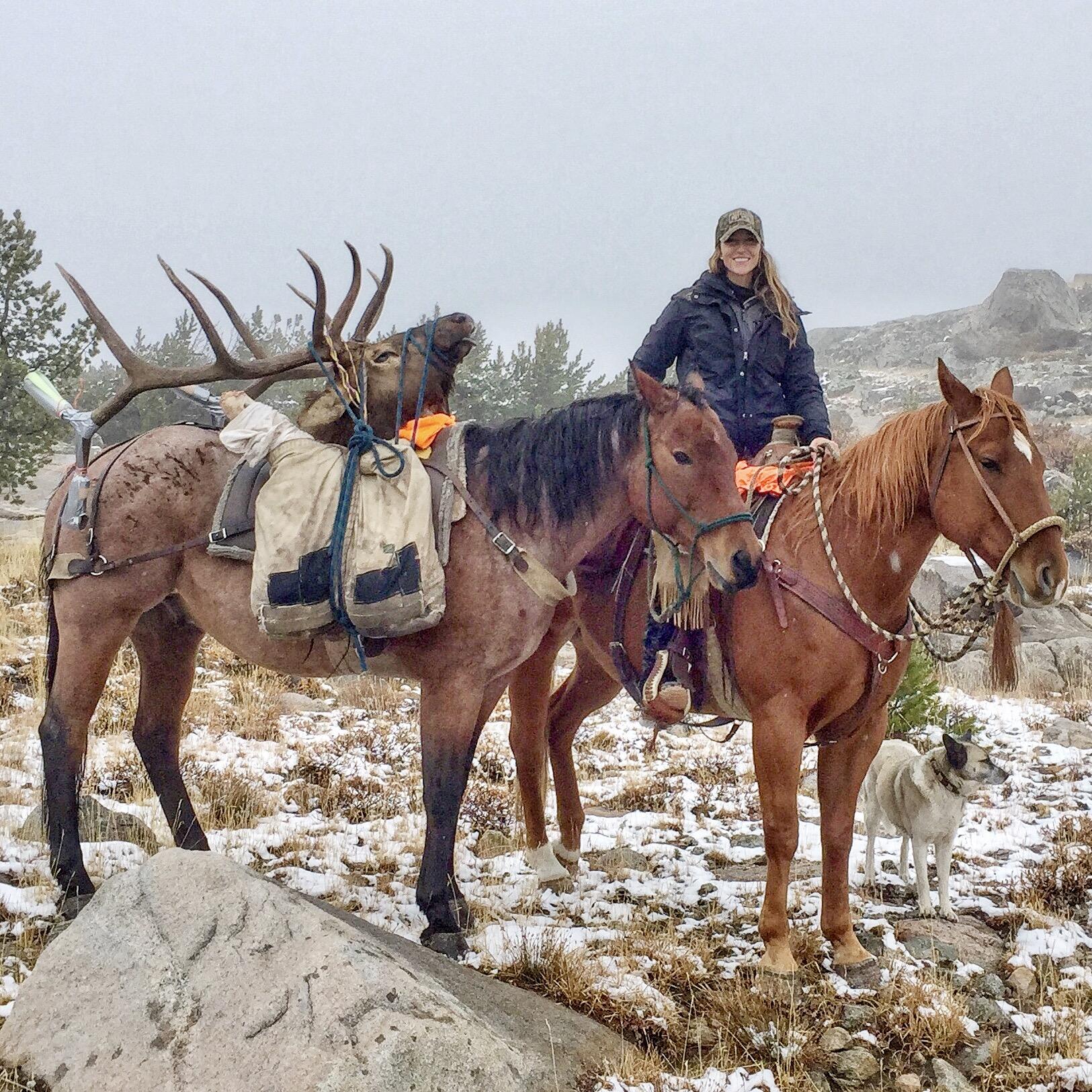 Packing Elk2.jpg
