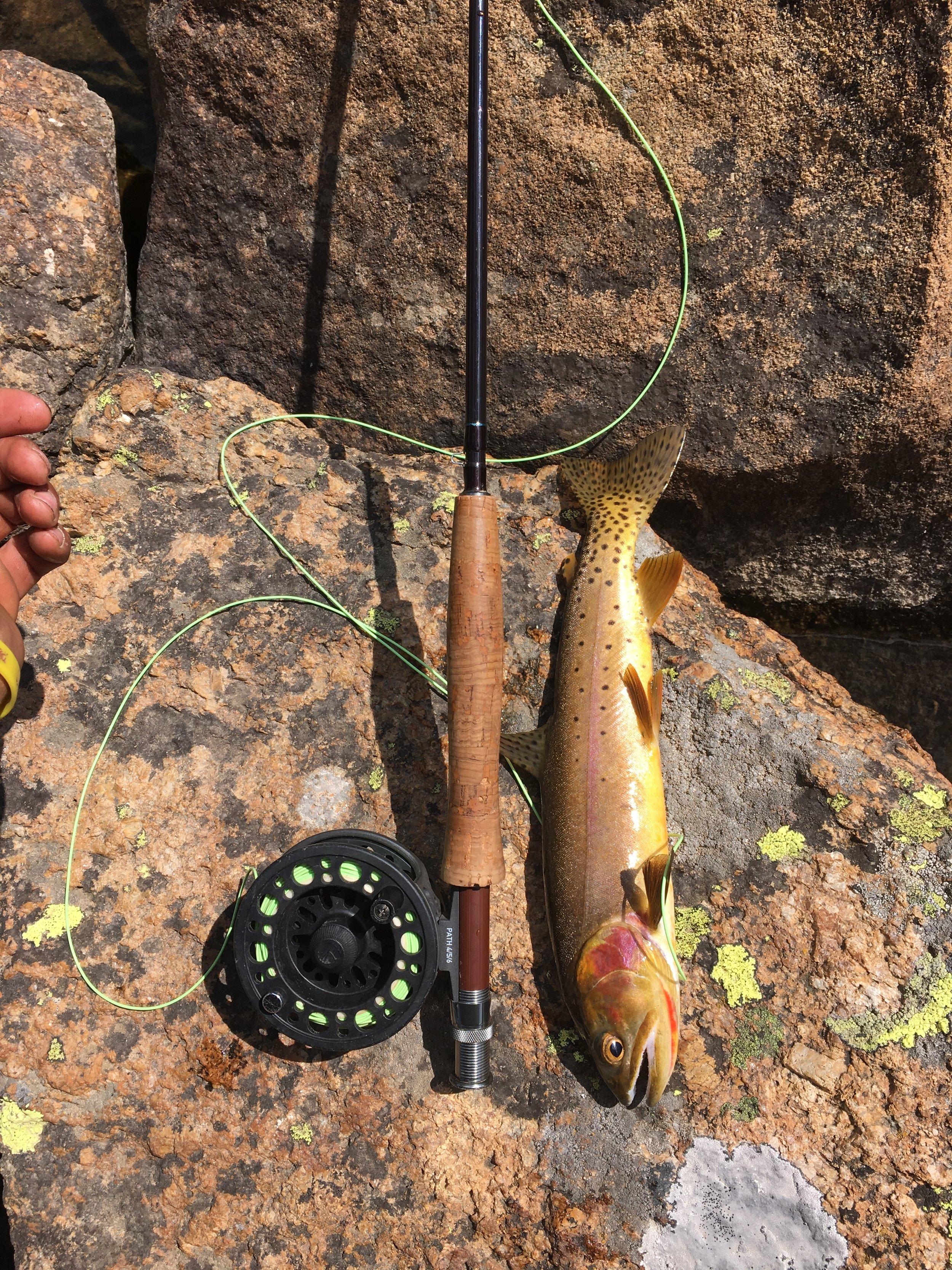 Ian's fish.JPG