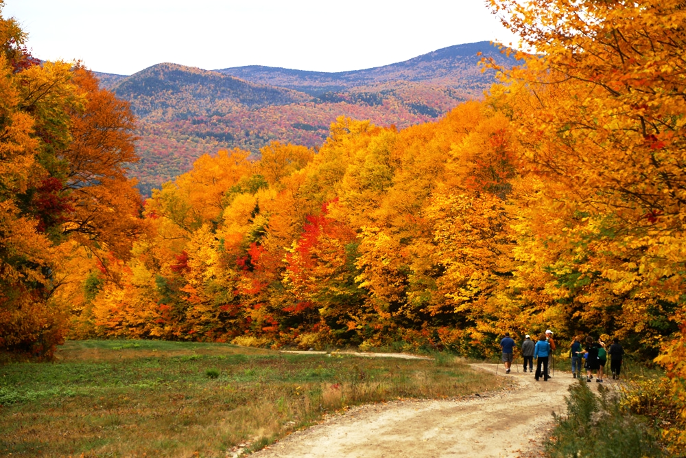 Waterville Valley Resort, New Hampshire, has the best foliage in New England. And, the world, too. Thanks to the White Mountain National Forest, Waterville Valley is home to the oldest network of hiking trails in America.