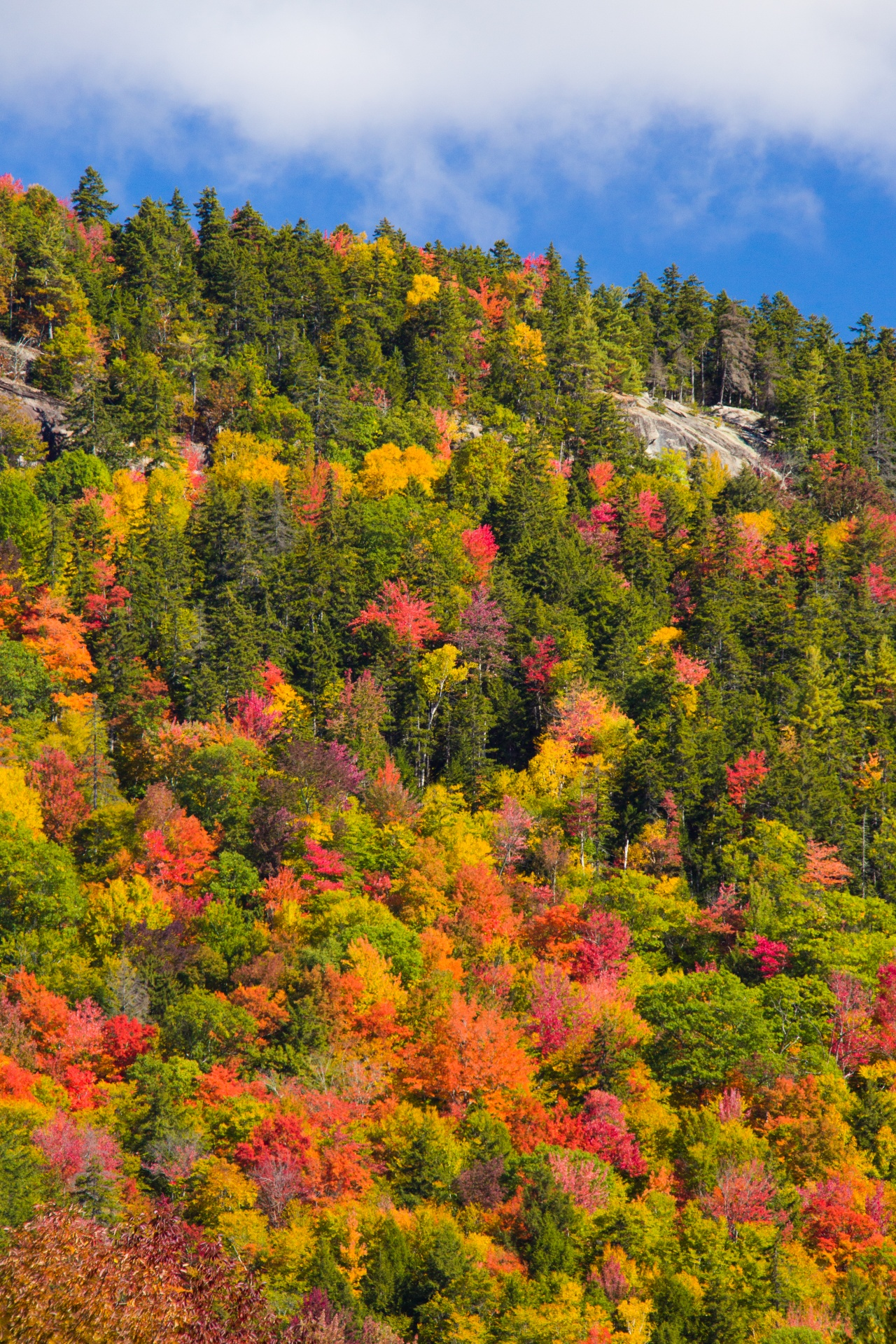 From foliage hikes, to mountain biking, to apple picking, the best of fall begins in Waterville Valley.  Starting at $136 per night , this deal includes Freedom Pass activities like golf, chairlift rides, tennis, athletic club access, bike rentals and more.