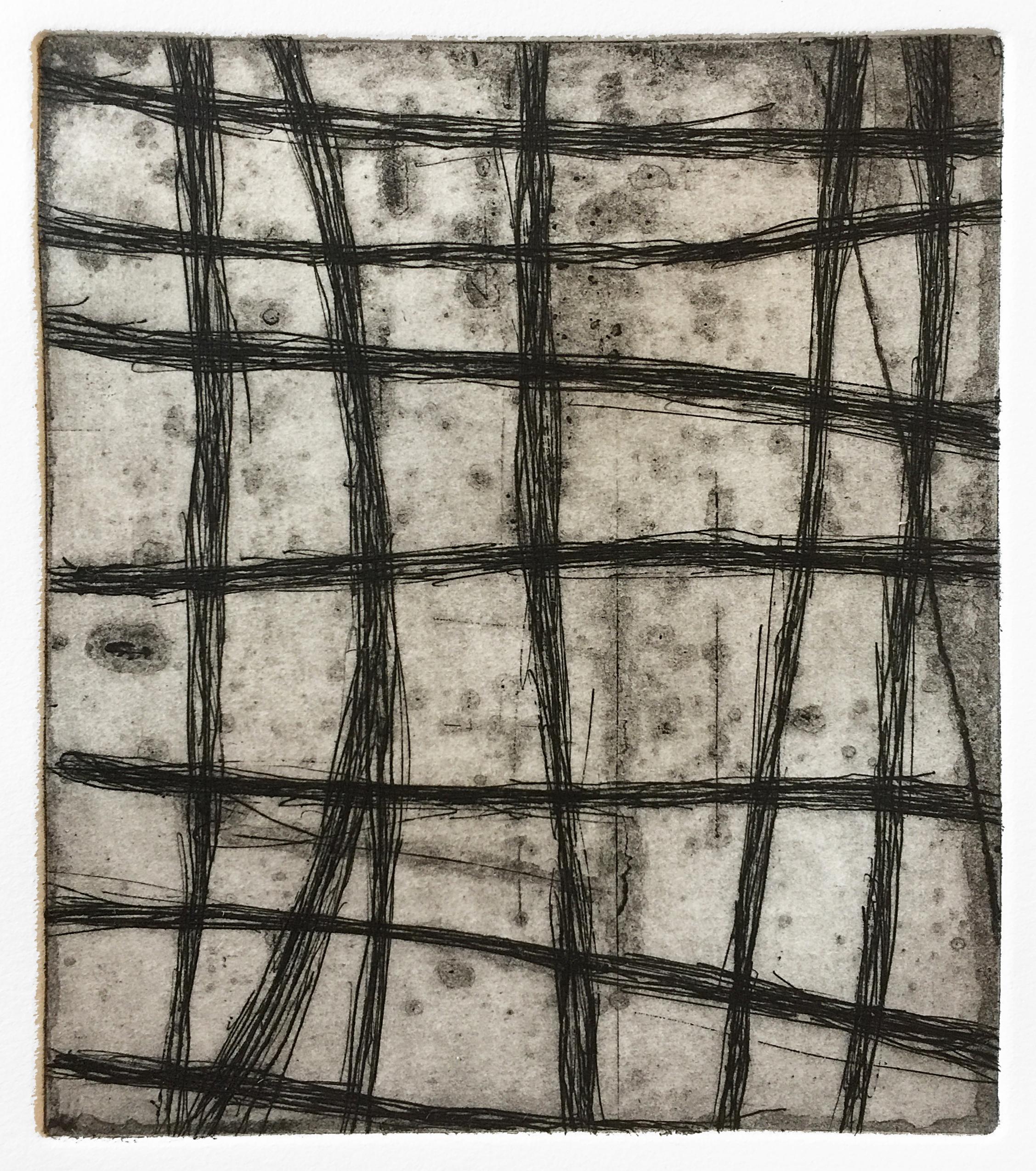 Branch Grid (Nocturnes), 2018