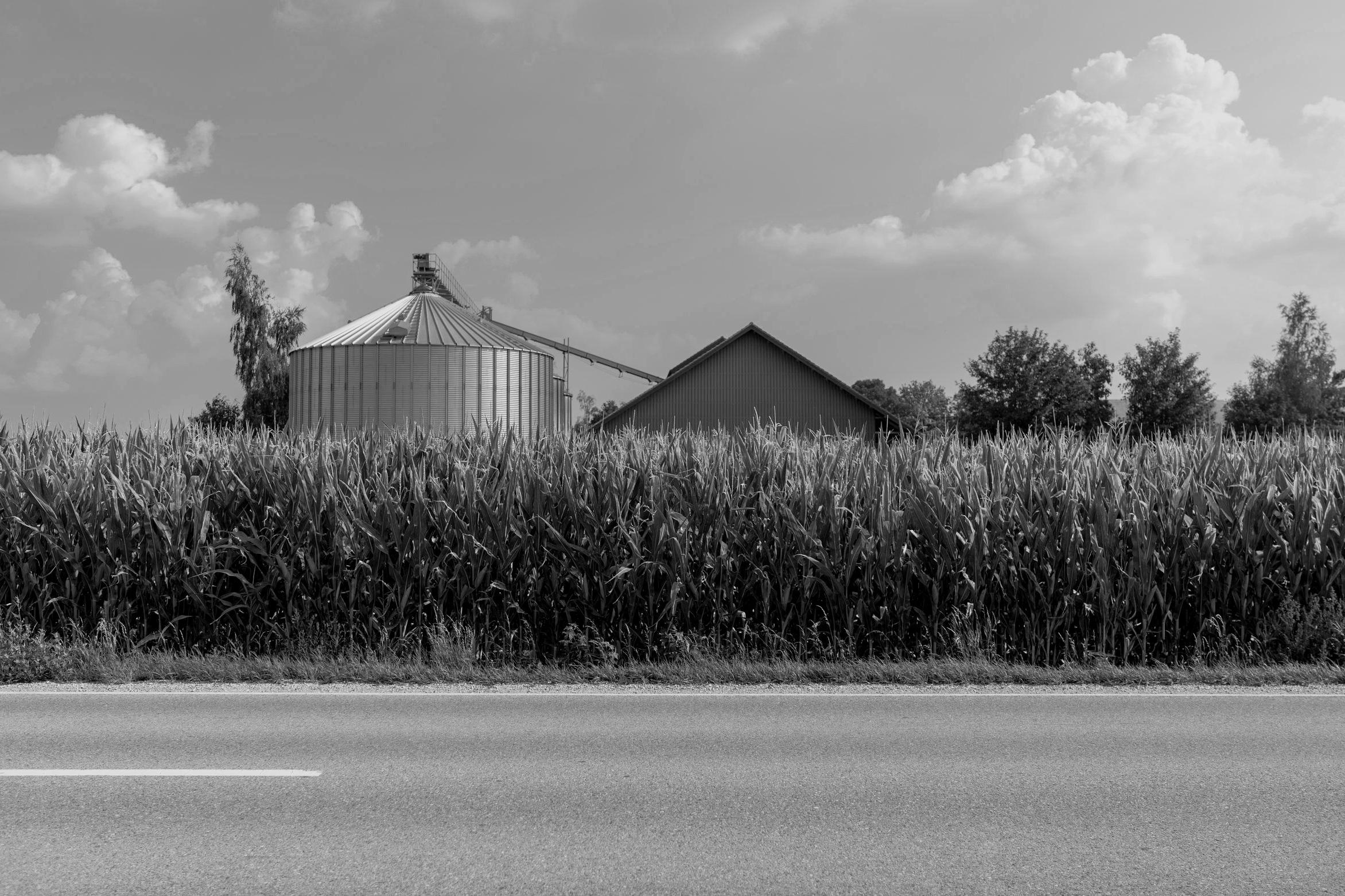Rural Agenda -