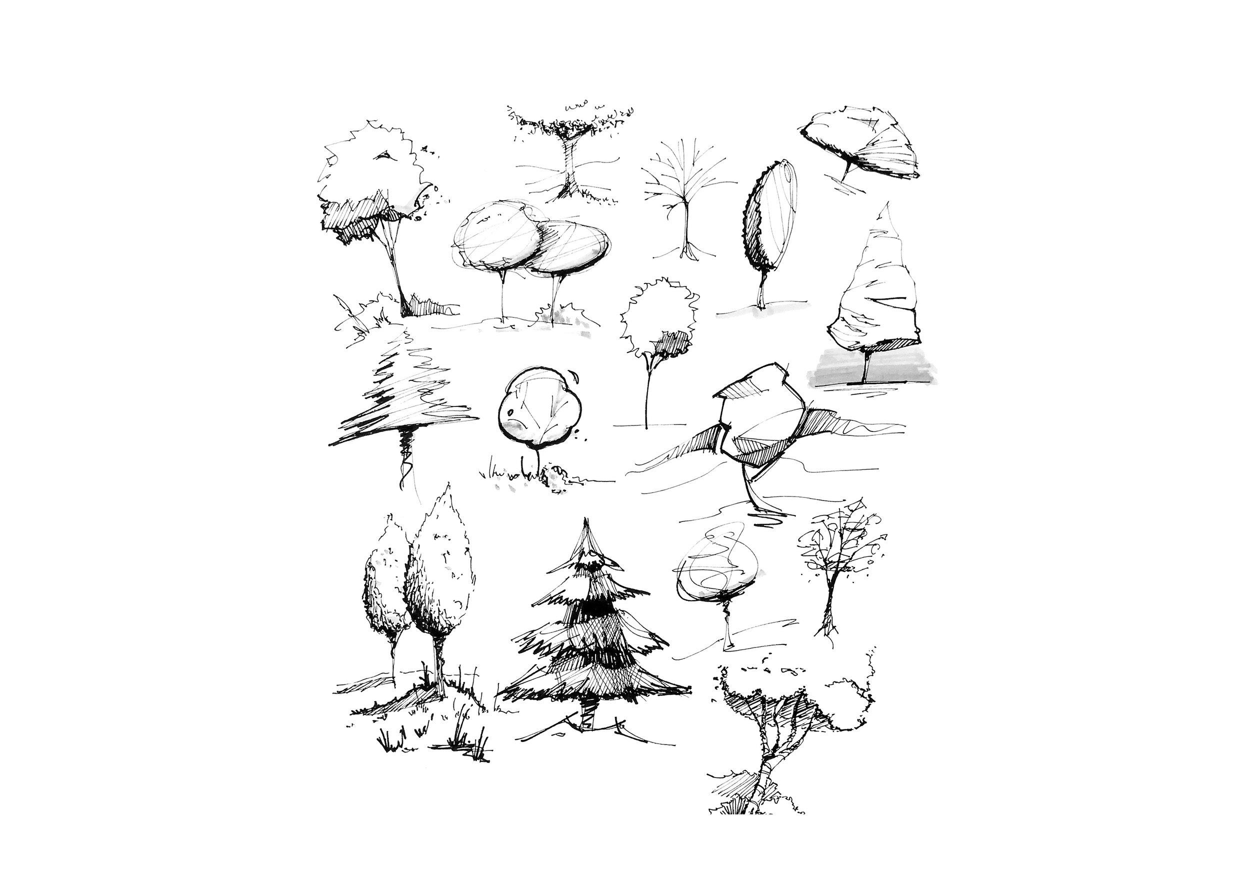 Trees_2019_01.jpg