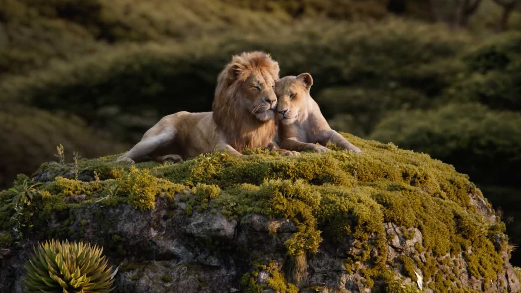 lion-king-simba-nala.jpg