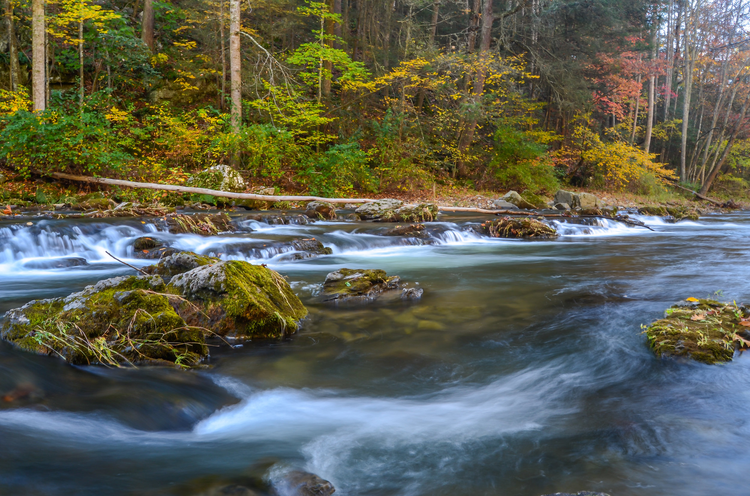 autumn-fall-creek-Highland County-Virginia.jpg