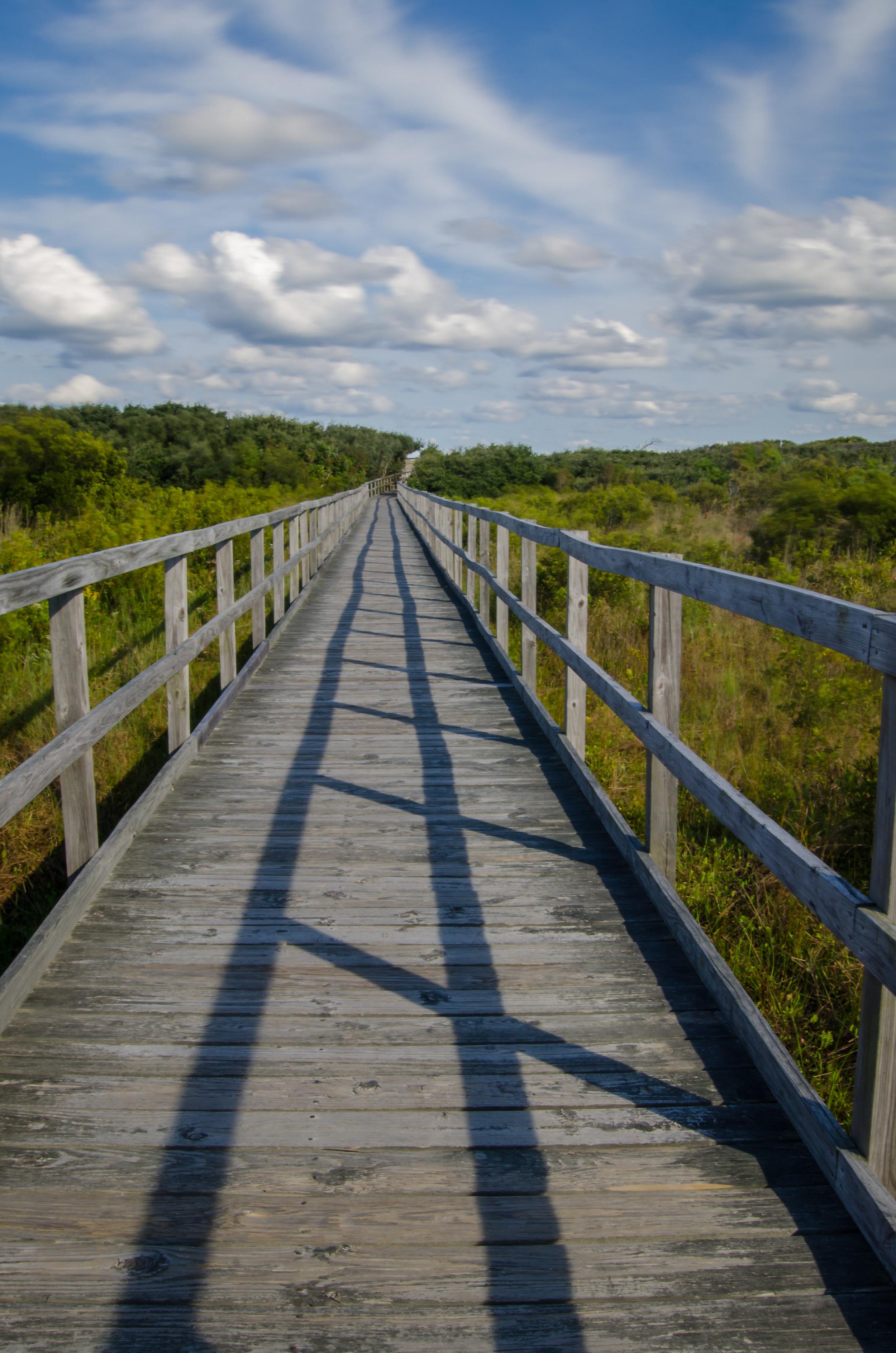 beach-boardwalk-path-dunes-Virginia Beach-Virginia.jpg