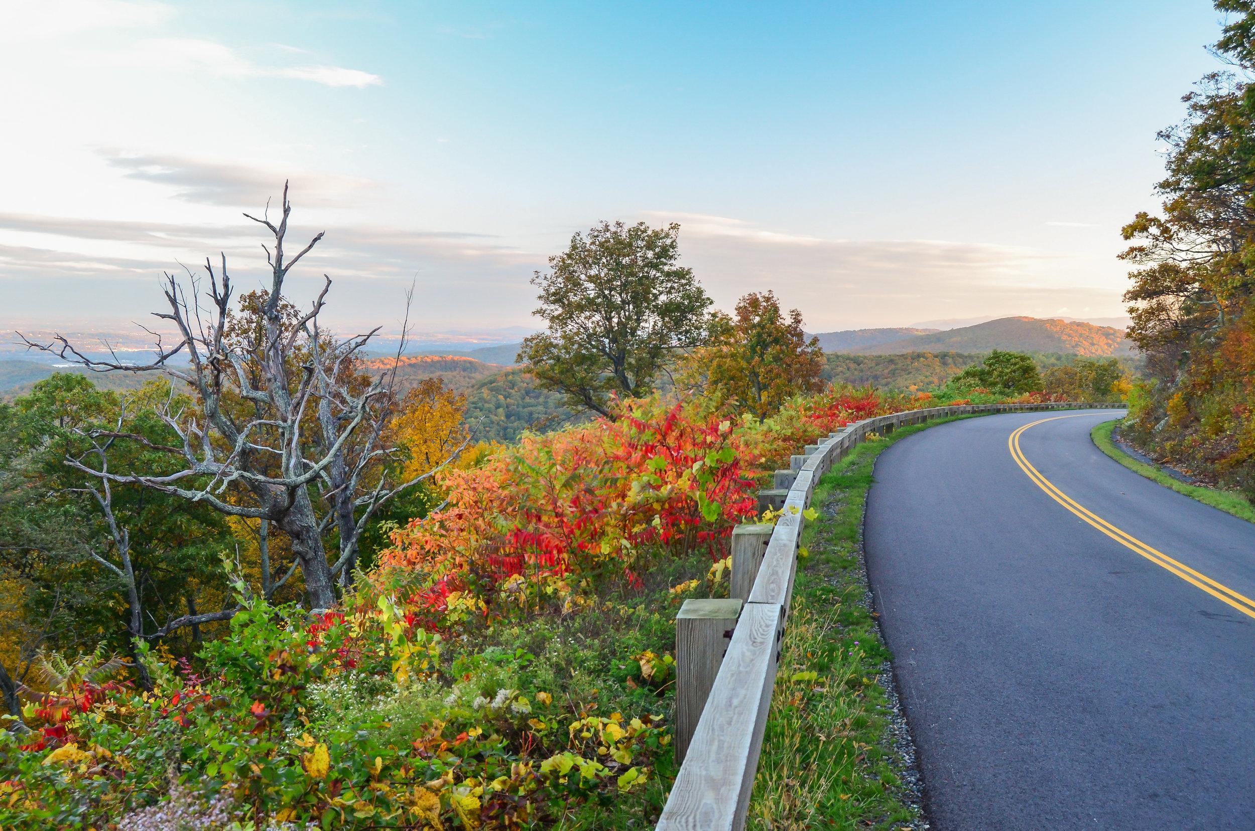 autumn-fall-blue ridge parkway-virginia.jpg