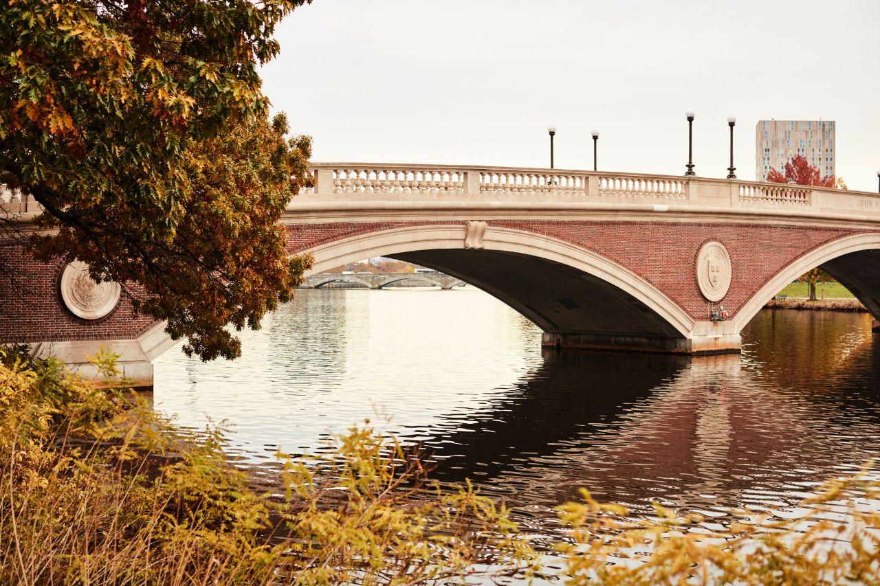 Cambridge(ChrisChurchill)09.jpeg