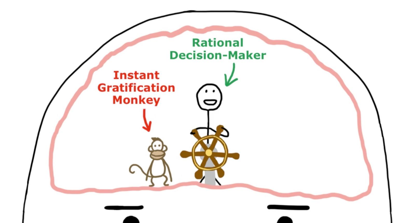 Instant-Gratitification-Monkey.6ecd5da983524d91a938662dc49cde00.png