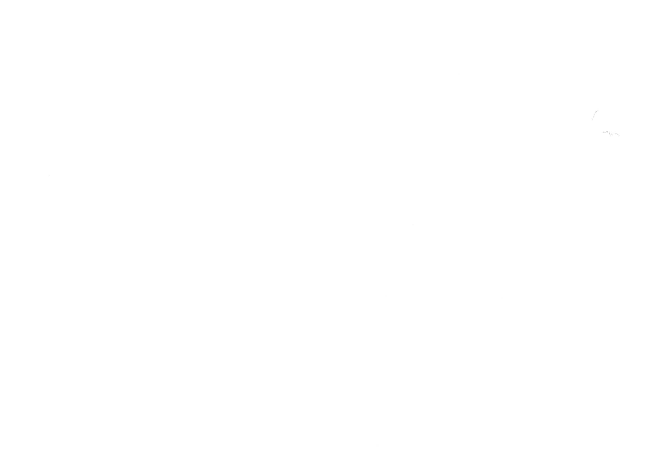 flower scan2 50 percent.png