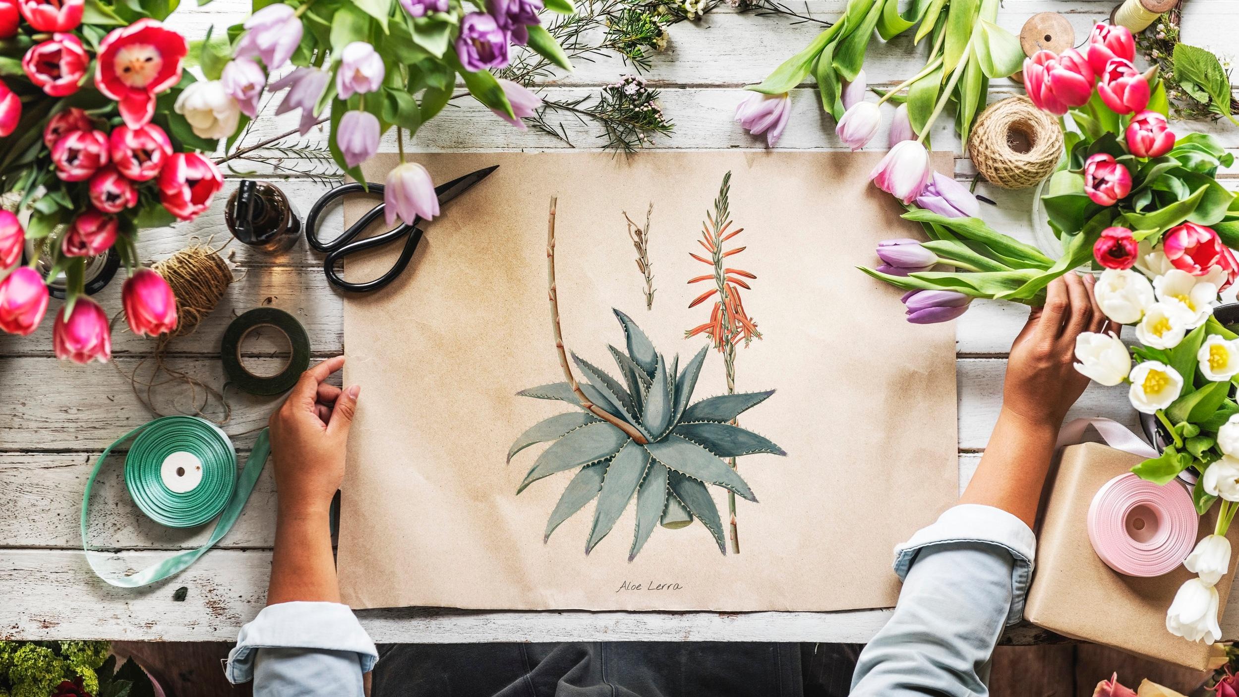 Atelier 7 Artes - O Atelier 7 Artes é especializado na criação de sabonetes, cosmética e cuidados corporais à base de produtos naturais.