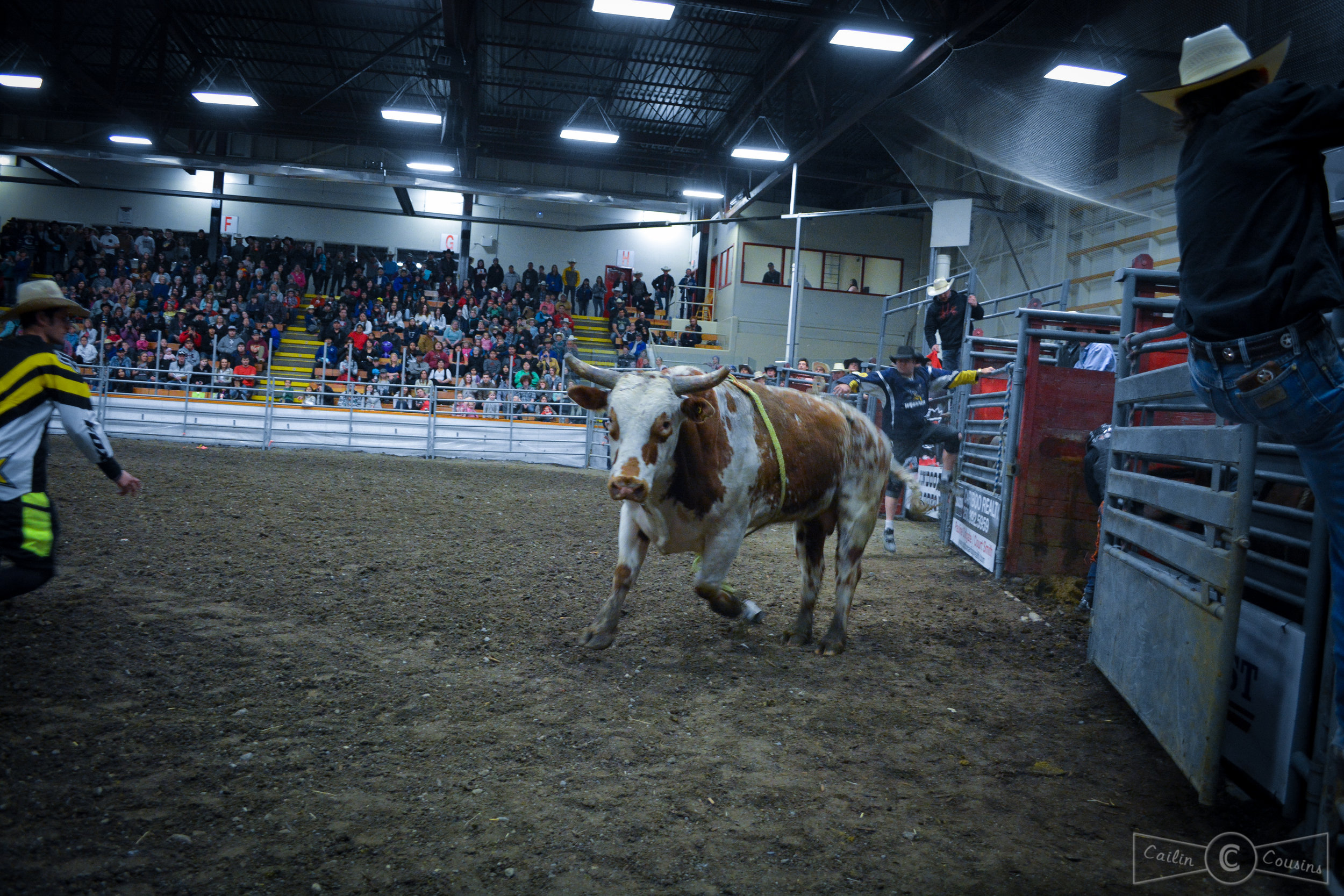 051715_rodeo_cc.jpg