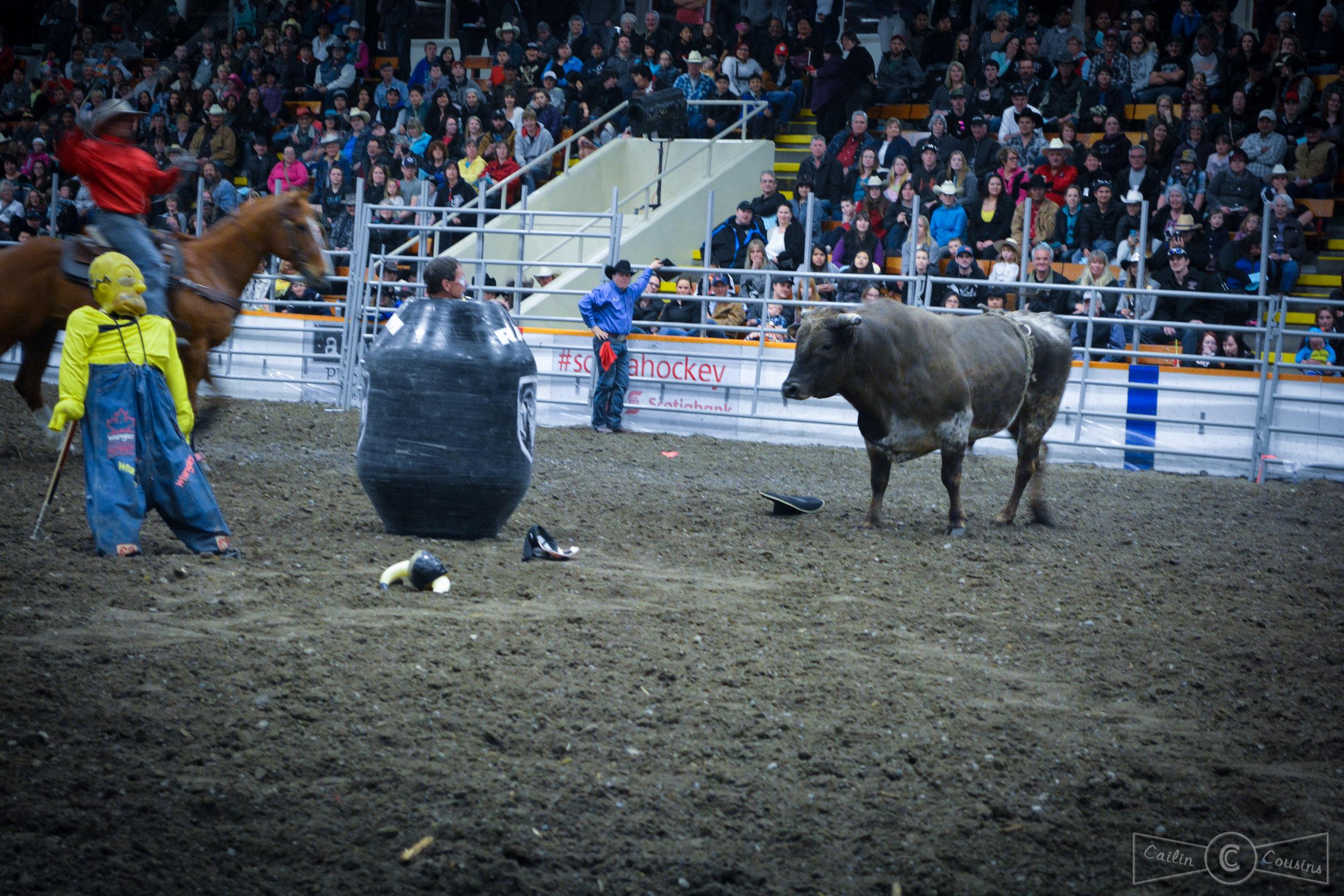 051715_rodeo_cc-2.jpg