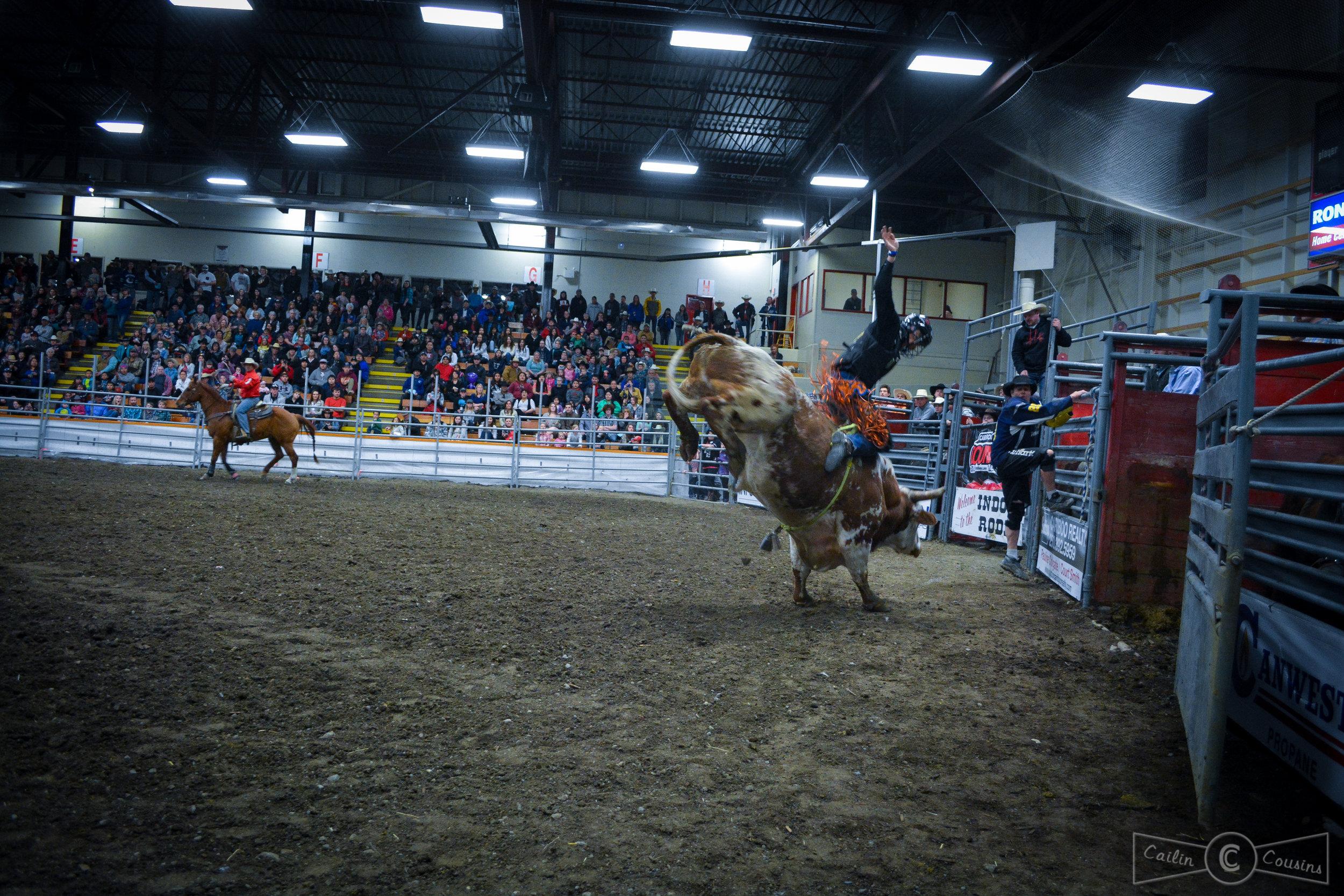 051715_rodeo_cc-4.jpg