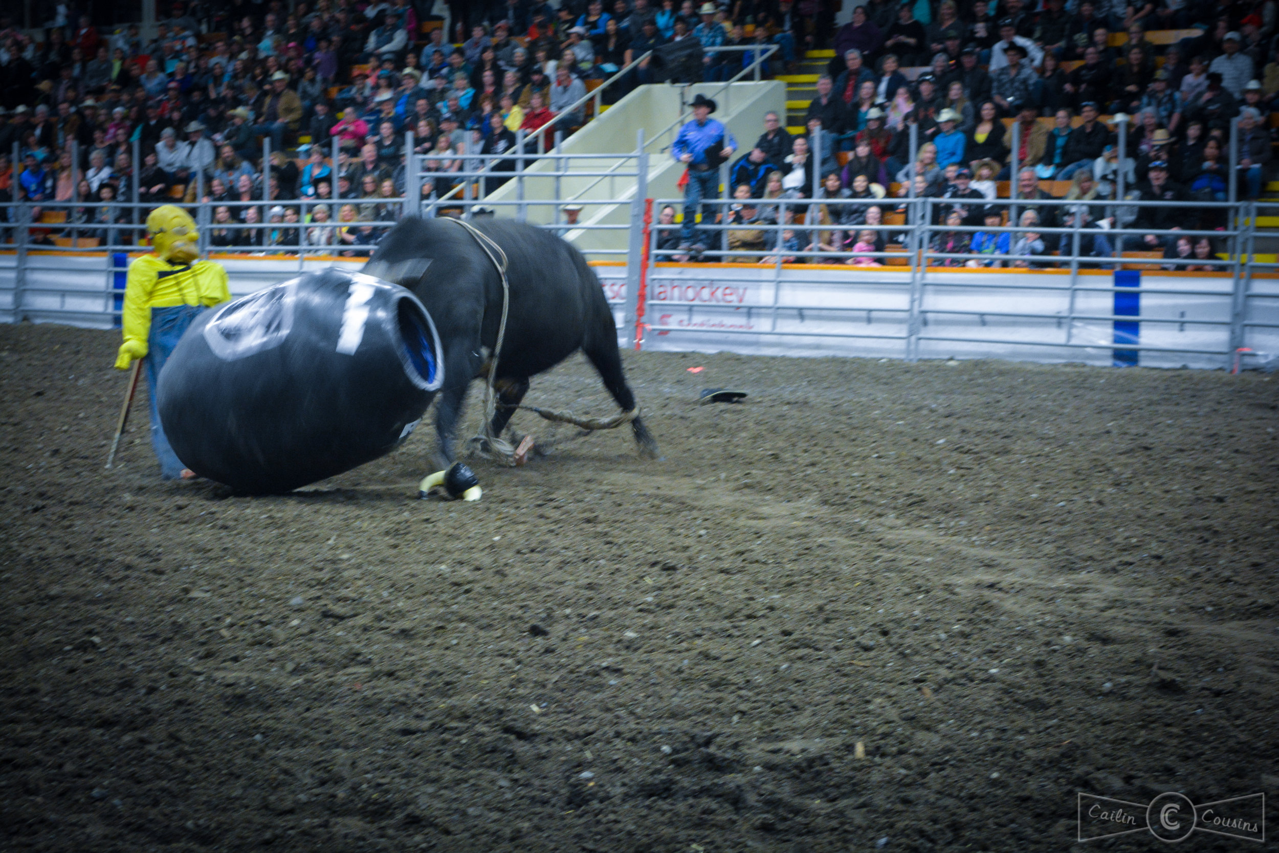 051715_rodeo_cc-5.jpg