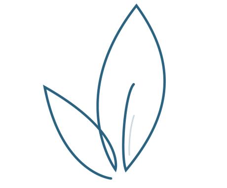 Leaf icon symbolizing simple clear social media plans