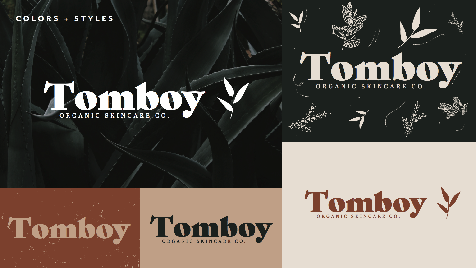 Tomboy's logo, after Brand Therapy