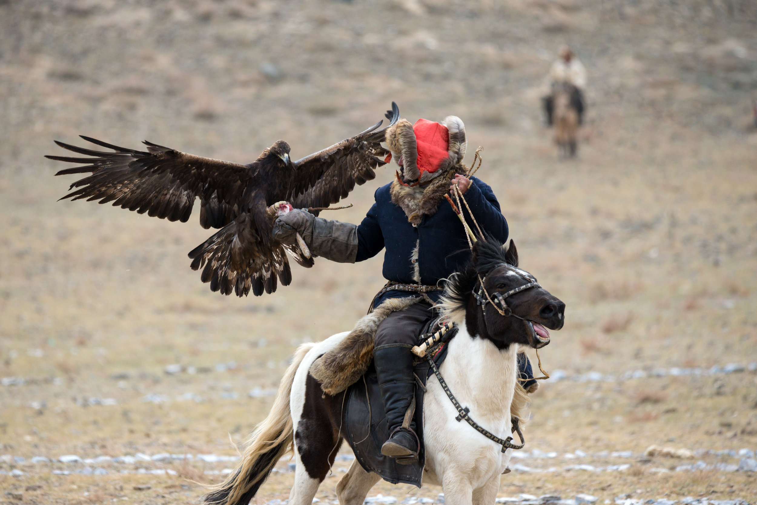 One of the games played at the Altai Festival where the hunter must call his Eagle to his hand
