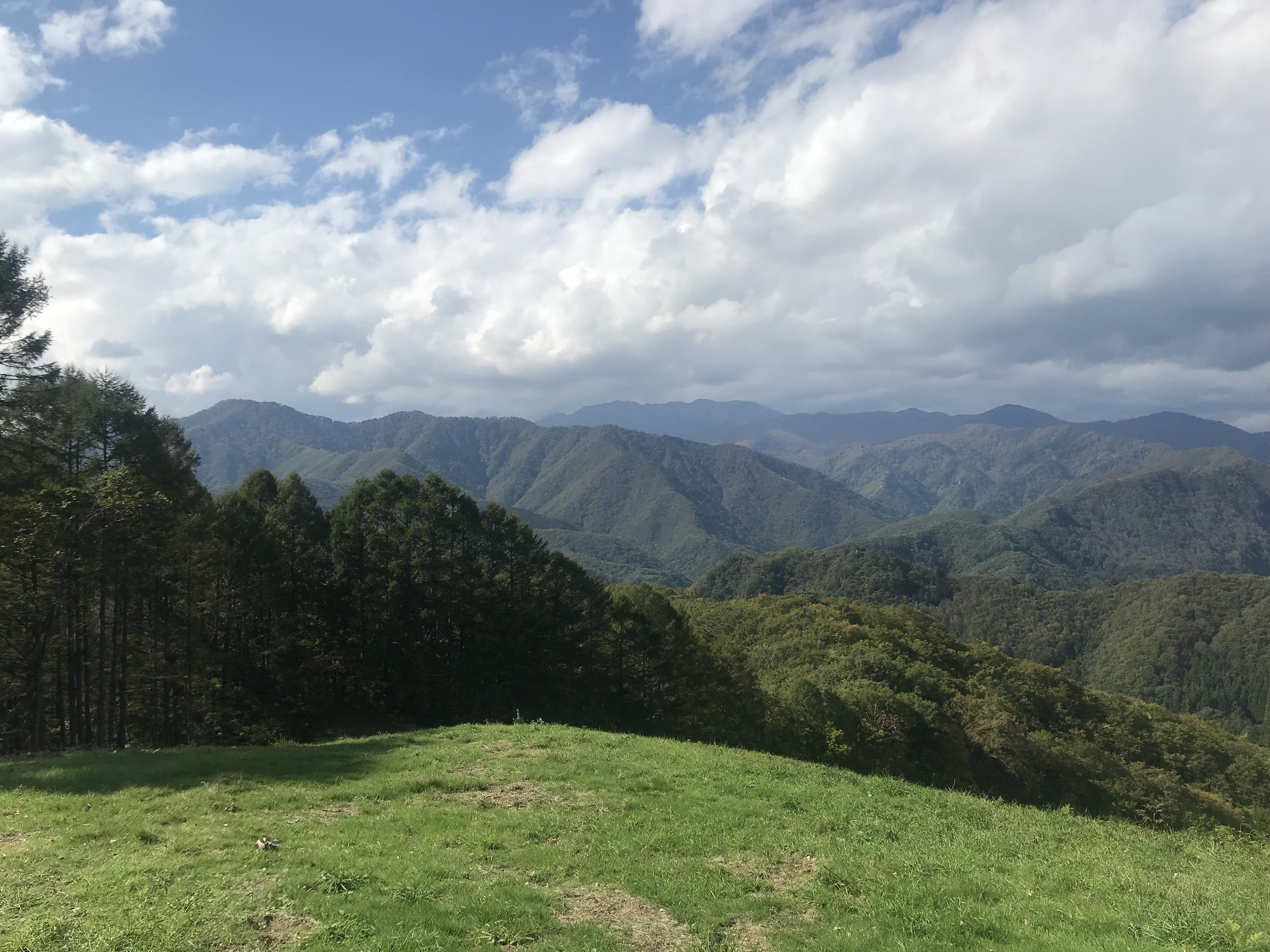 vistas 2.jpg