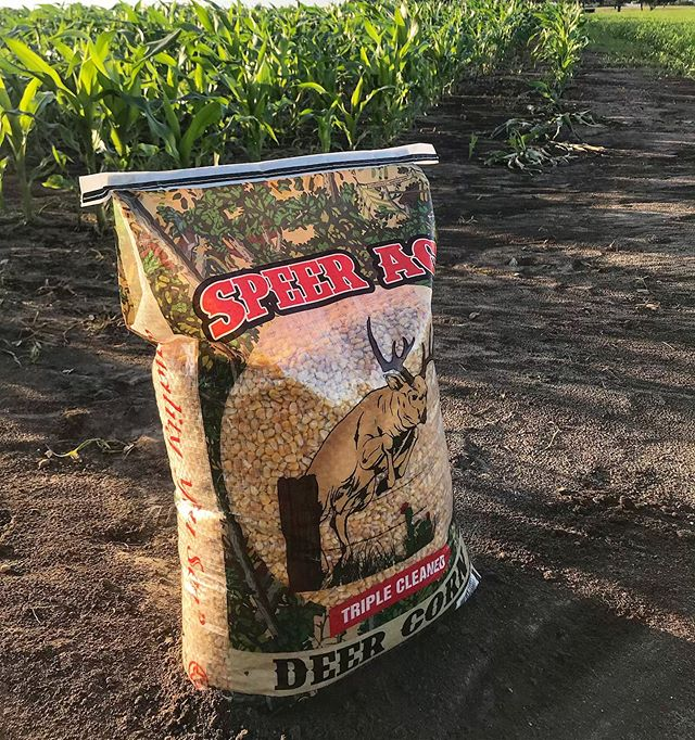 Triple Clean Deer Corn🌽 Are you maximizing your feeder? . . Learn more about Feeder Max Products ⤵️ www.feedermaxfeeds.com