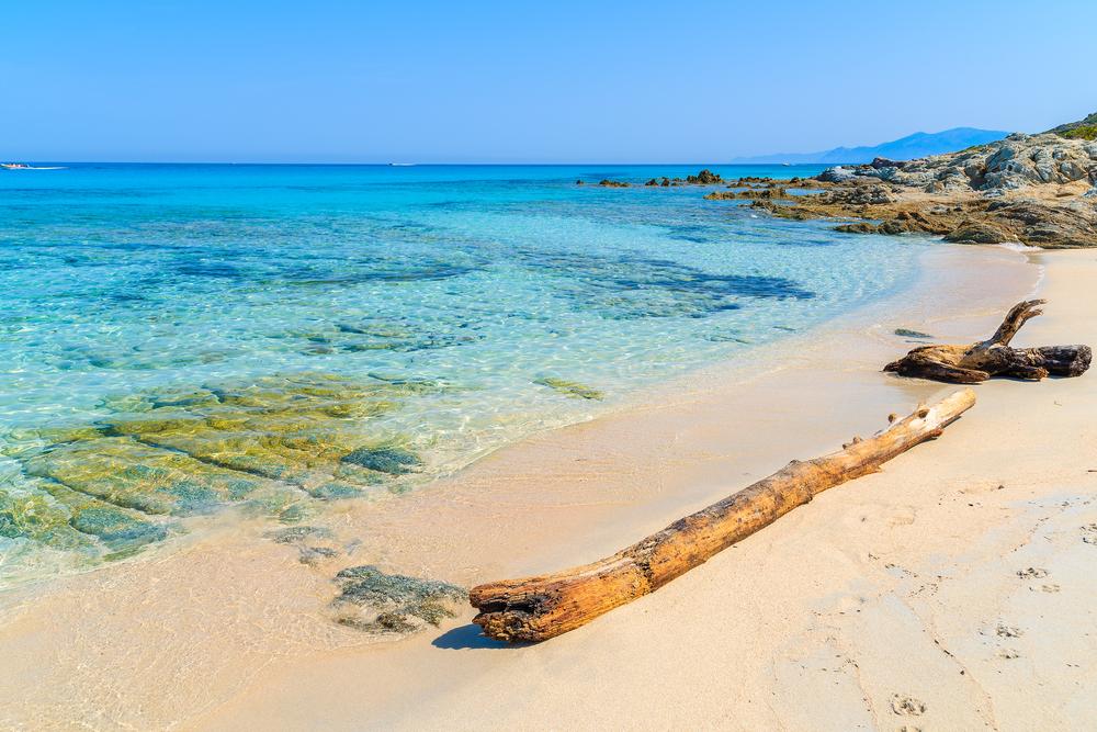 SALECCIA BEACH corsica.jpg