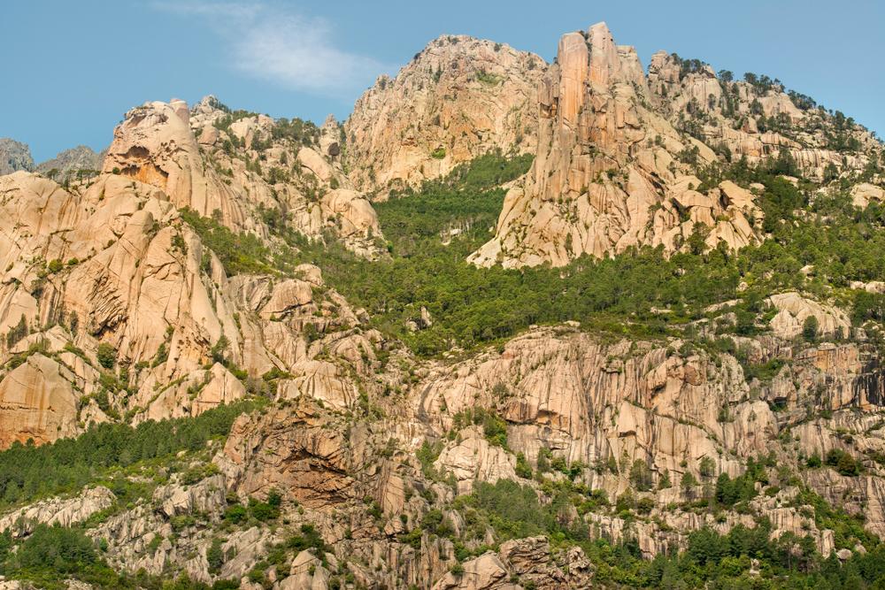 Alta Rocca corsica.jpg