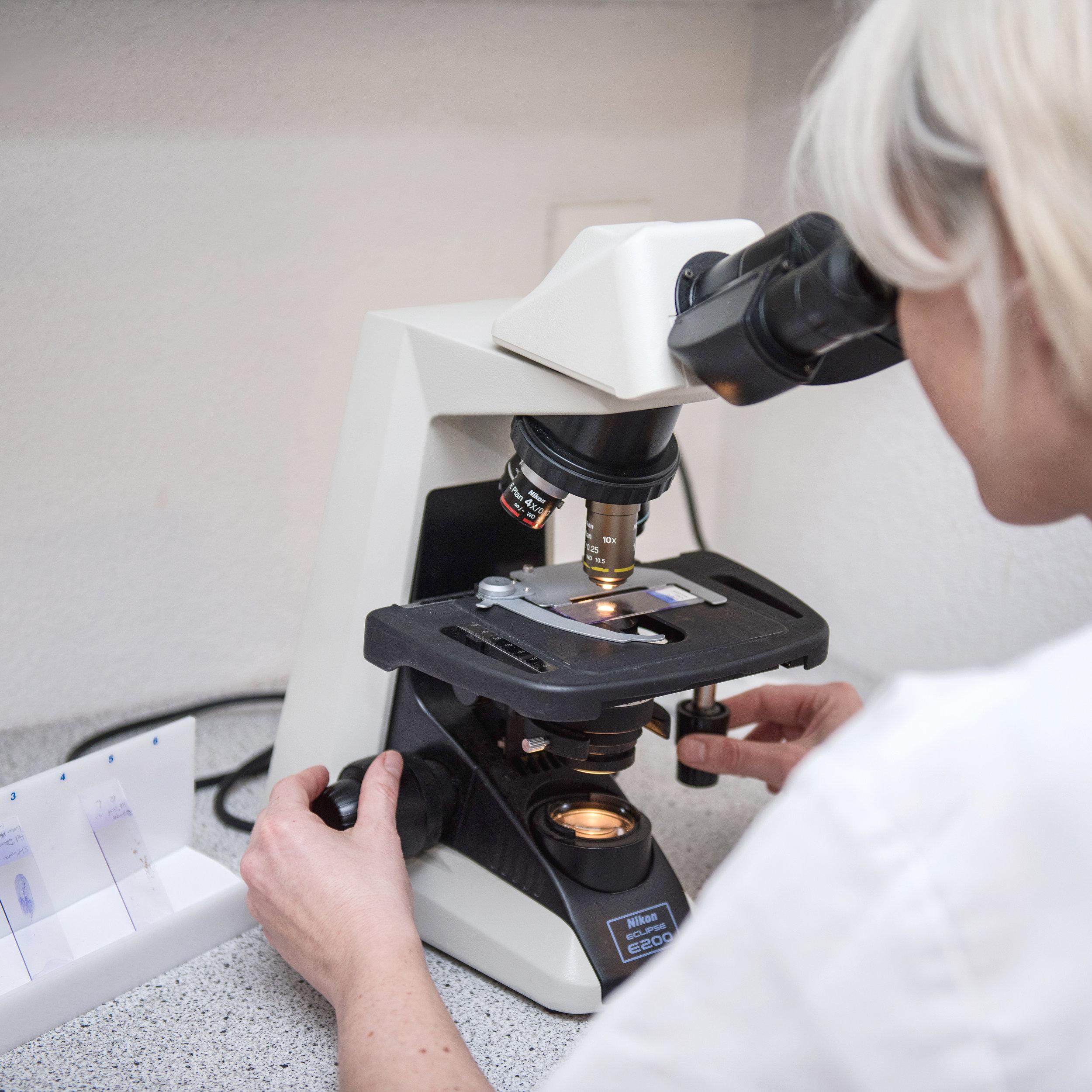 Dermatologie - Haut- und Ohrerkrankungen sind oft mit Juckreiz, Fell- oder Hautveränderungen verbunden. Zur Diagnose führen mikroskopische Untersuchungen (Zytologie, Hautbiopsie) oder Blutuntersuchungen. Ein grosser Fokus gilt zudem der Diagnose und langfristigen Therapie von Allergien (z.B. Futtermittel- oder Umweltallergie).