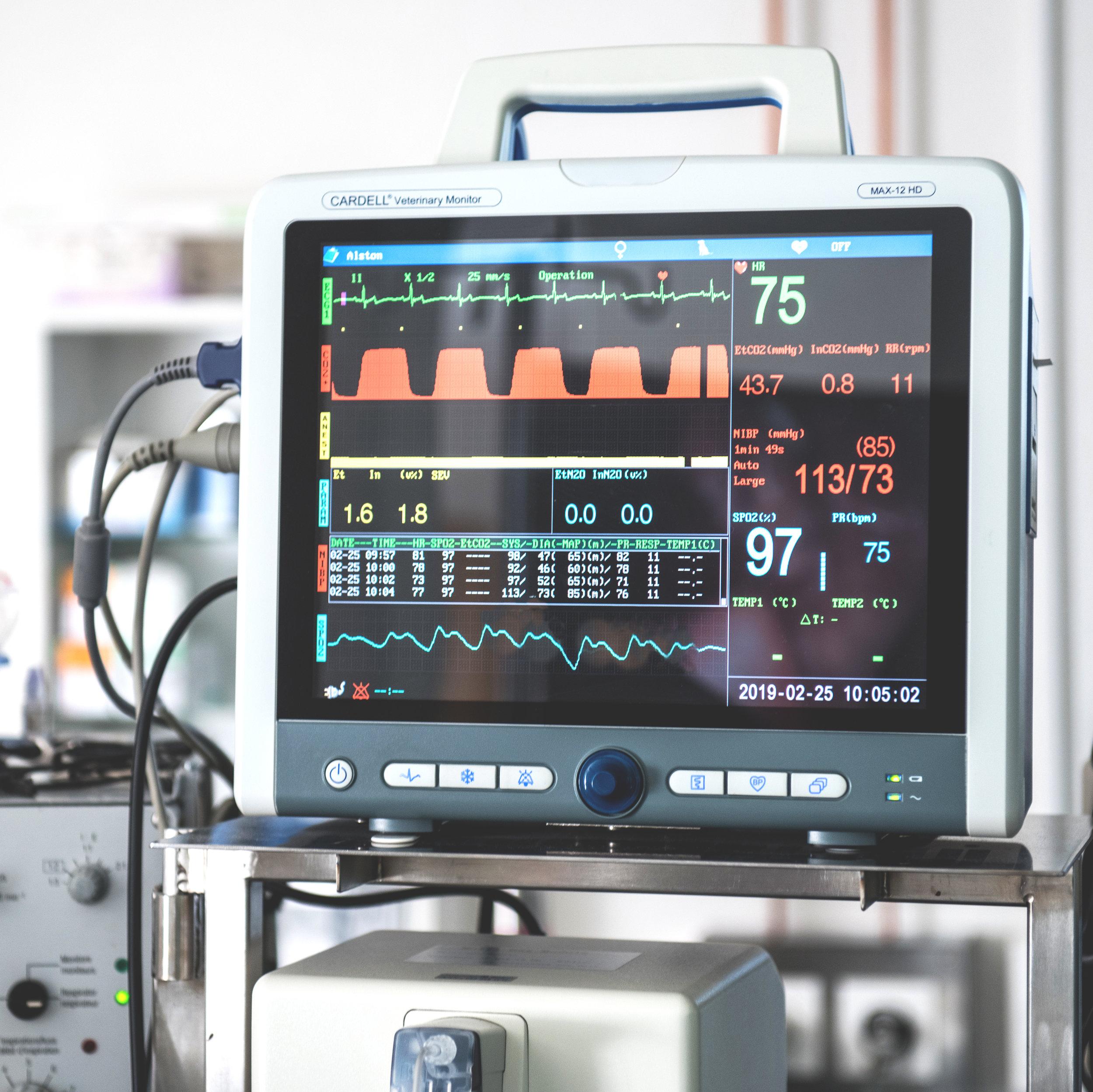 Kardiologie - Die Kardiologie beschäftigt sich mit Herzerkrankungen bei Hund und Katze. Häufig werden Tiere mit angestrengter Atmung, Schwäche oder Husten vorgestellt. Durch eine kardiologische Abklärung mittels Herzultraschall, EKG und Blutdruckmessung kann eine Diagnose gestellt und die Krankheit behandelt werden.