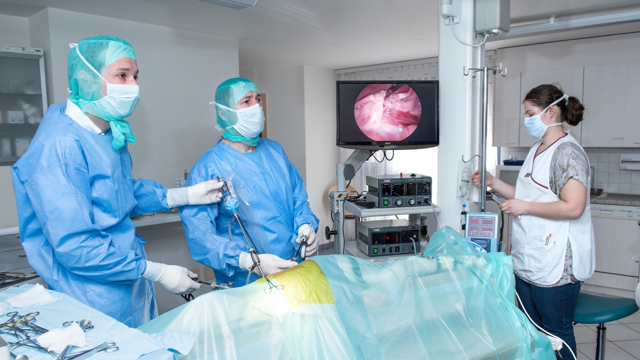 Endoskopische-Kastration-Huendin.jpg