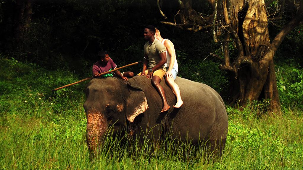 Elephant Back Ride Sigiriya- Cristiano locco (6) - Edit.jpg