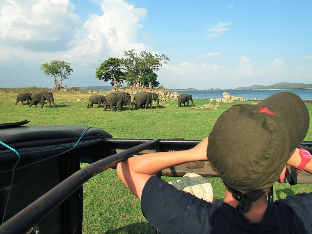 Junior ranger safaris on an Ayu in the Wild family adventure itinerary