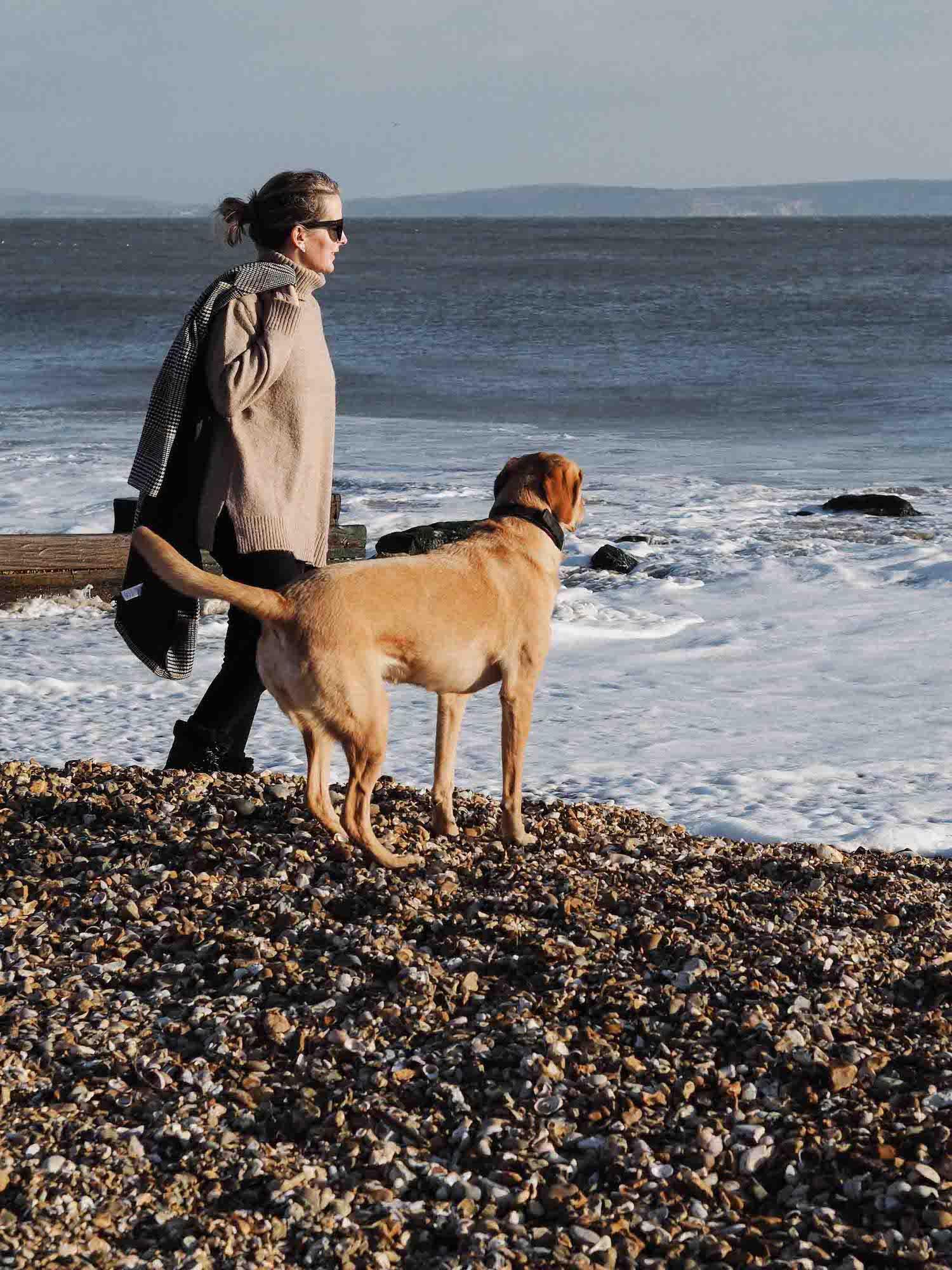 2 online stylist walking biscuit at the beach.jpg