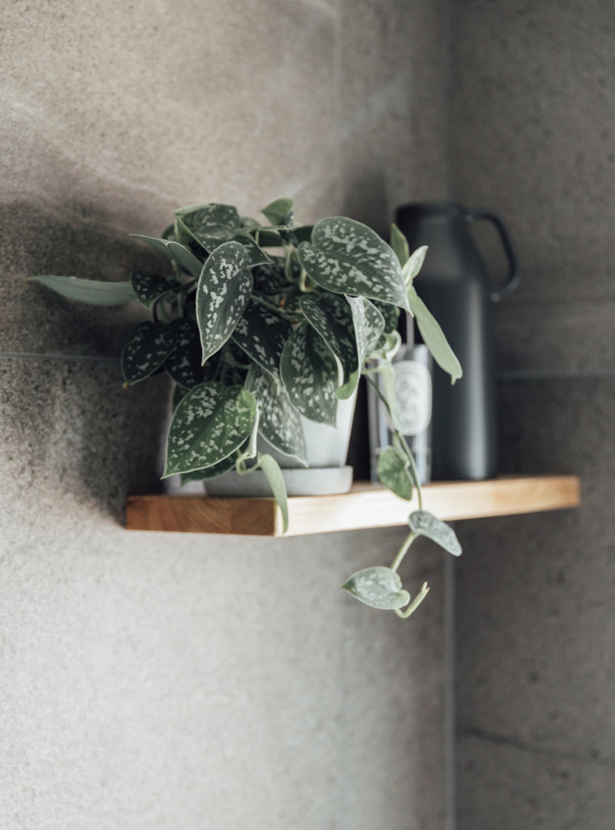 9 bathroom-shelf-plant-in-concrete-pot.jpg