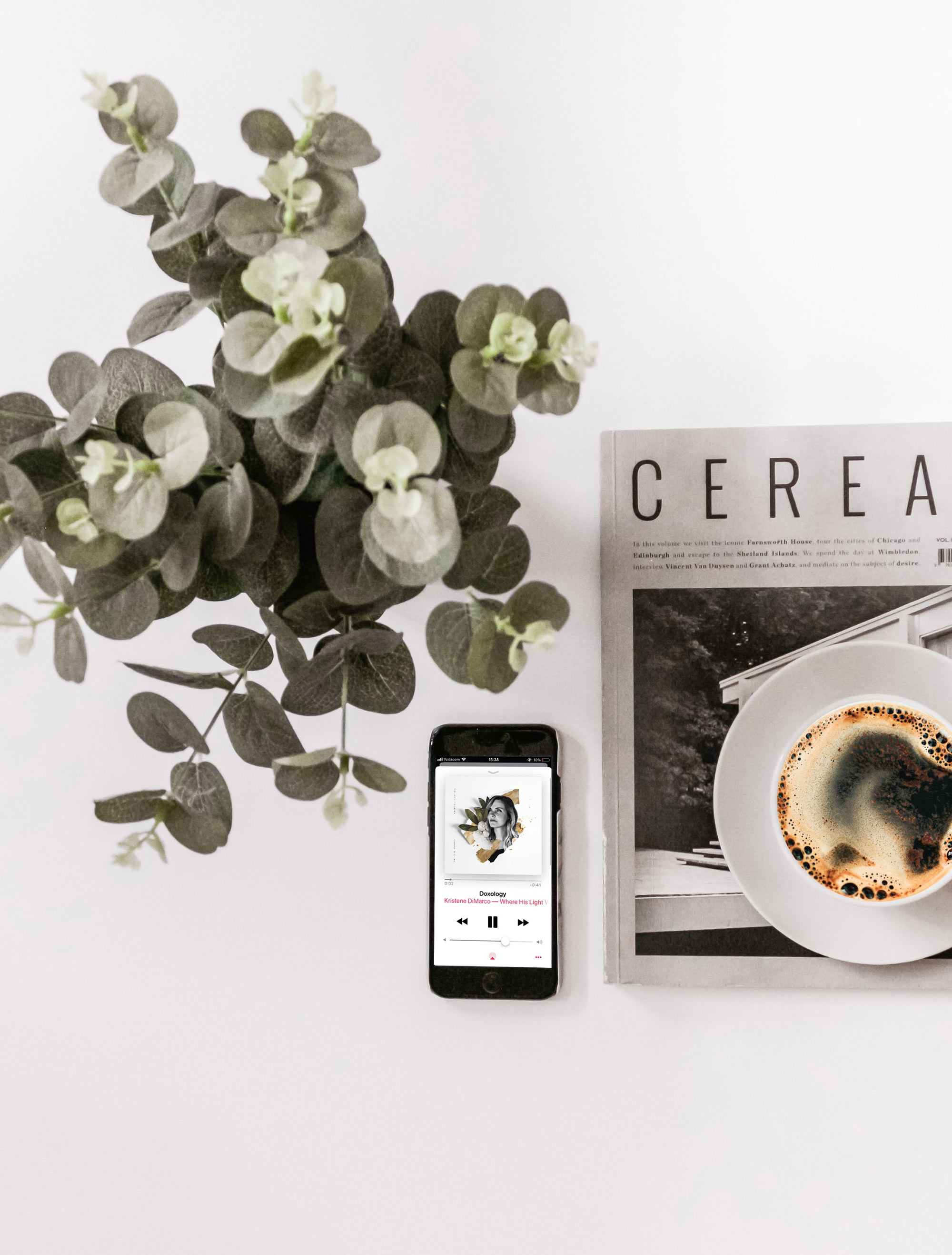 2 eucalyptus cereal magazine and coffee.jpg