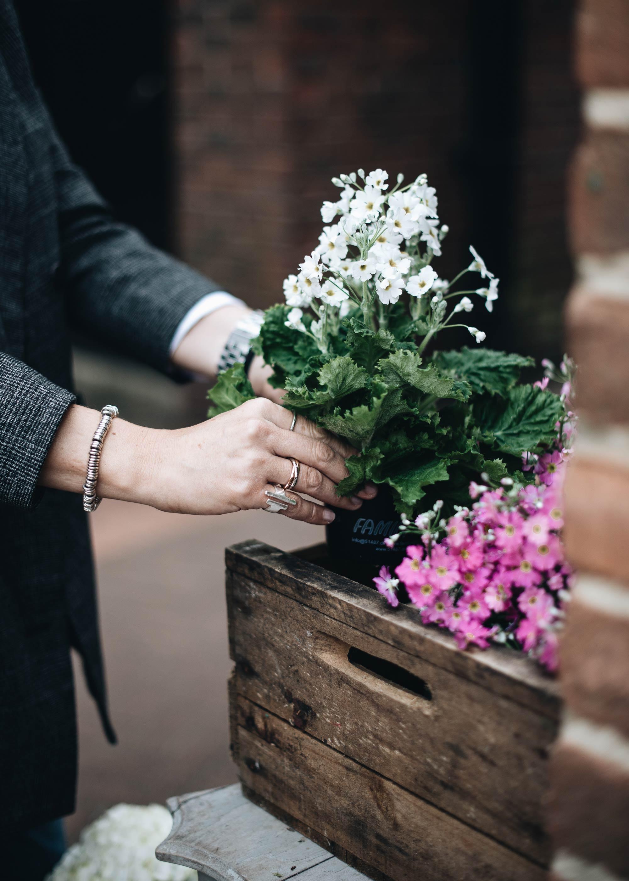 4-buying-spring-plants.jpg