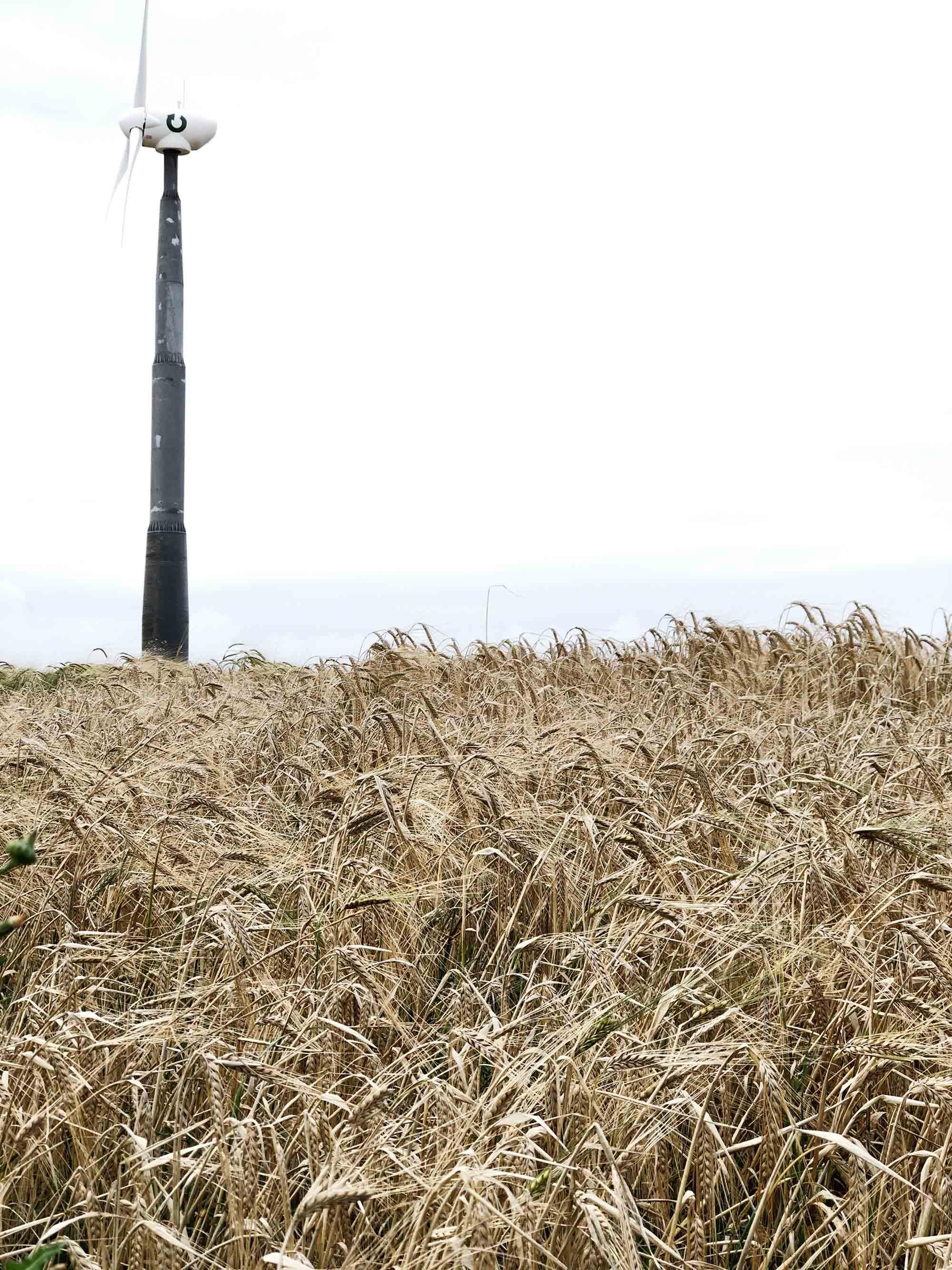3 SBS wind-turbine-in-Cornwall.jpg