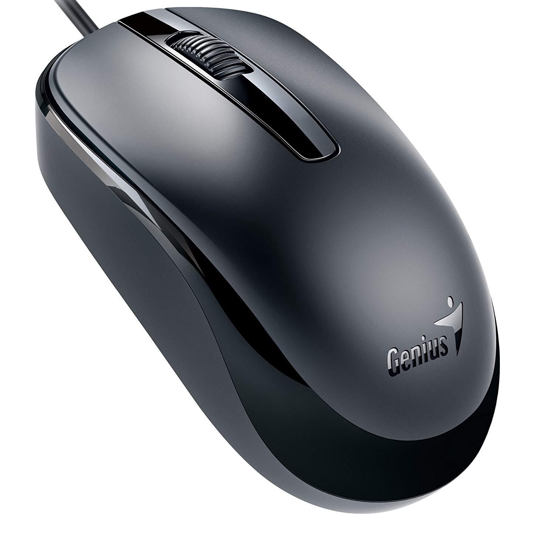 Genius Mouse.jpg