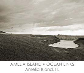 GRID-AMELIA-OCEAN.jpg