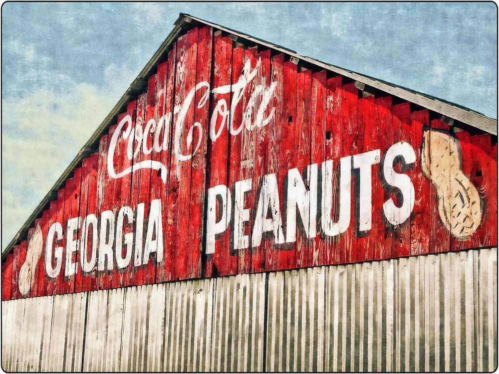 Georgia Peanuts | South Georgia