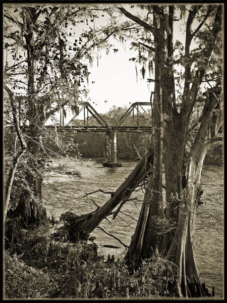 The Flint River   Albany, GA