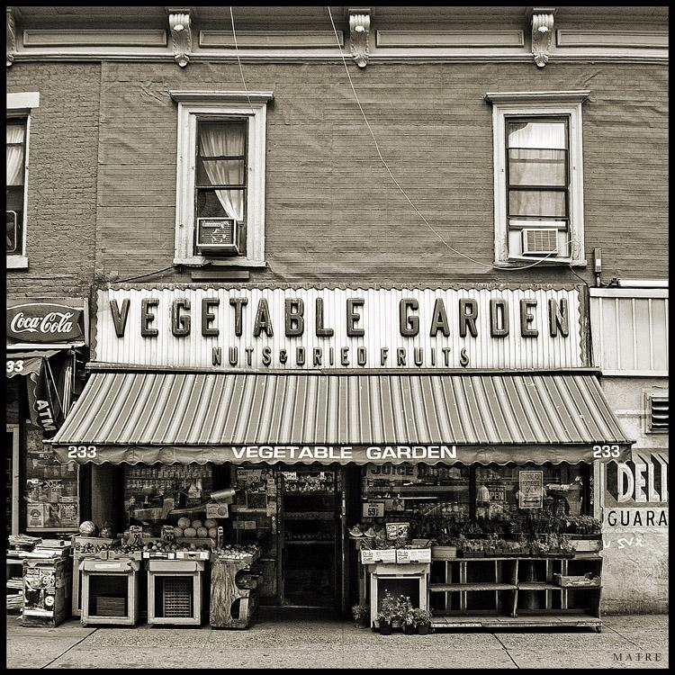 Vegetable Garden | Bleecker Street | NYC