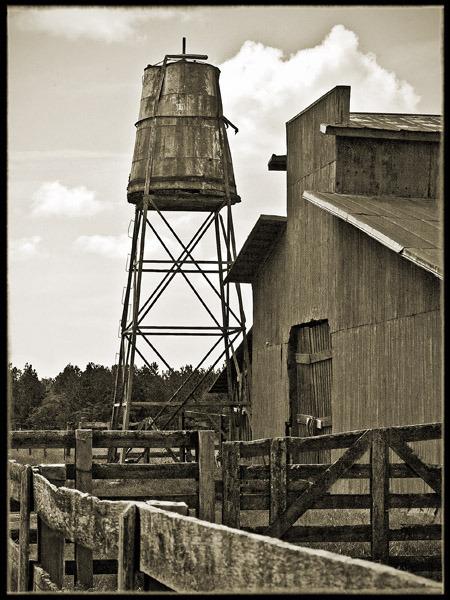 Bonds Trail Road   Sumter County, GA