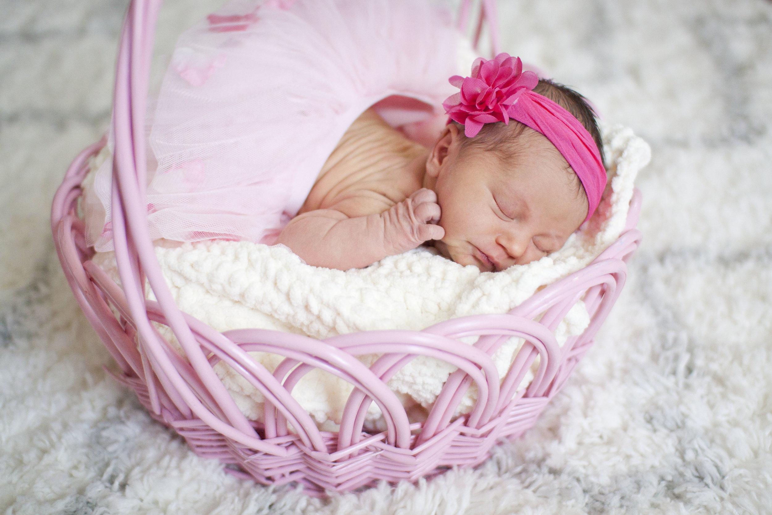 Newborn Session - $175