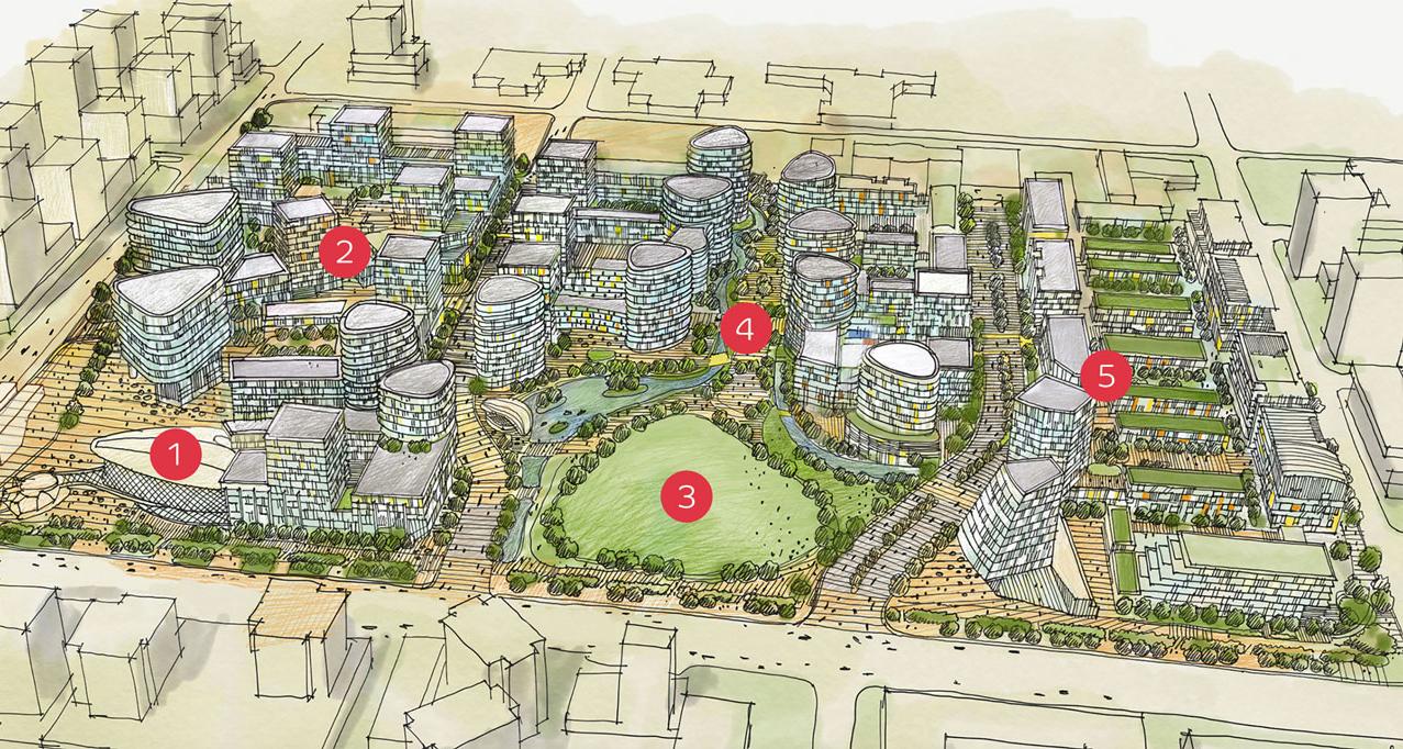 Lansdowne-District-Richmond-Overview.jpg